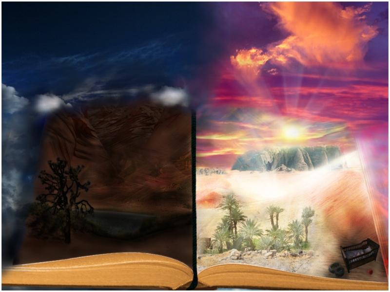 public-testi-Articolo-immagini-calli_0_20150116154417_a_libro_chiuso___1___libro_come_luogo_di_abbandono_by_piccolamimi-d52p4jx1